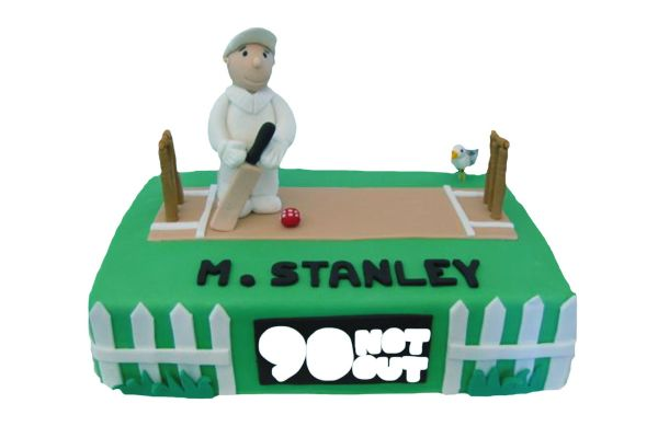 Cricket Fan Cake