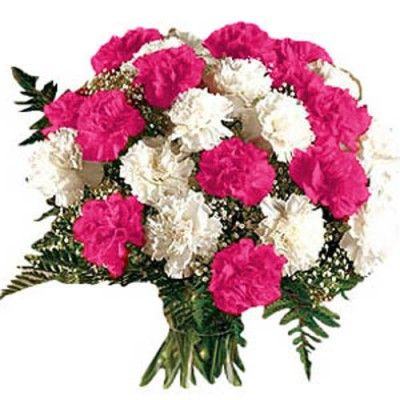 25 White and Pink Carnations