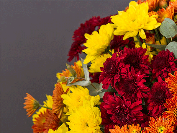 Health And Wealth Flowers