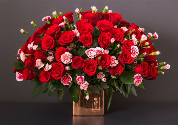 Passionate Red Flowers