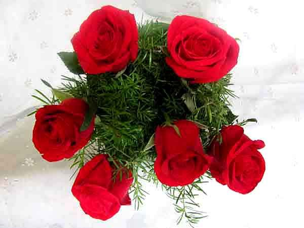Long Stem Bouquet