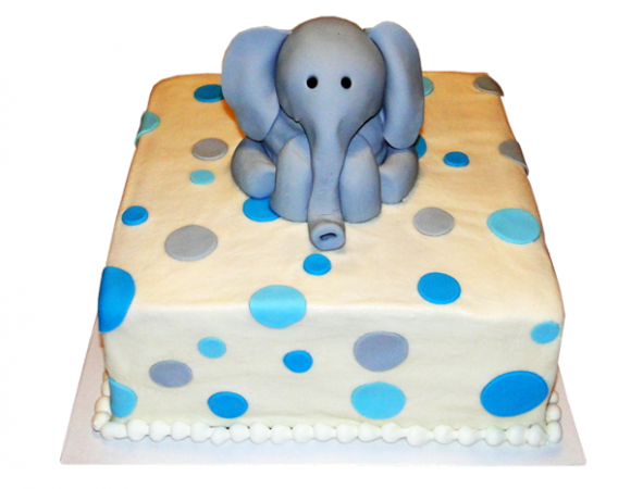 Elephant in the room Cake